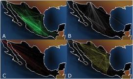 Analysis of México's Narco-War Network (2007–2011) | Papers | Scoop.it