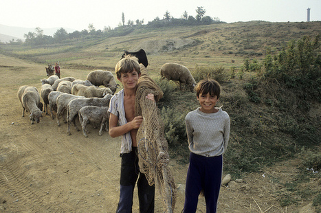 Boys in Albanian Countryside | flickr.com | manually by oAnth - from its scoop.it contacts | Scoop.it