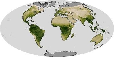 Vegetation : Global Maps   Réseau Tela Botanica   Scoop.it