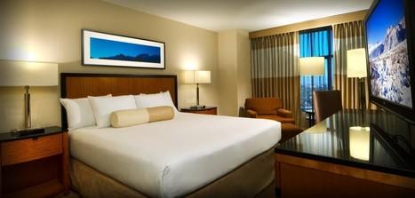 Une startup propose d'annuler et réserver à nouveau des chambres d'hôtels pour obtenir de meilleurs prix - HelloBiz | Nouvelles Technologies et Tourisme | Scoop.it