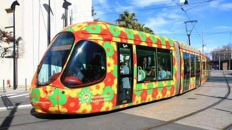 Un piéton est mort après avoir été percuté par un tramway à Castelnau-le-Lez - France 3 Languedoc-Roussillon | L'actu des tramways | Scoop.it