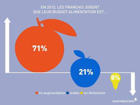 Les Français et leur budget dédié à l'alimentation | Comportement alimentaire | Scoop.it