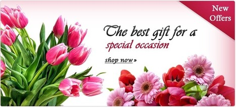 Flowers online delivery India | Expressions Flora | Scoop.it