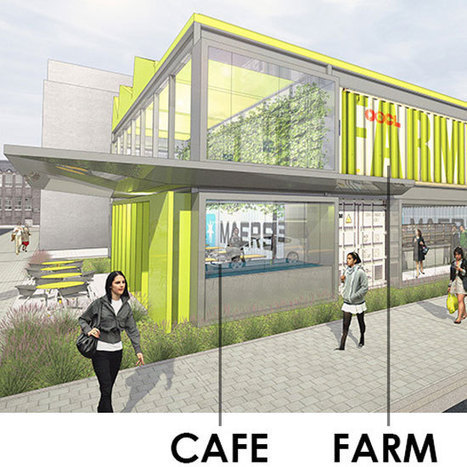 The Willy Wonka of Urban Agriculture | This Gives Me Hope | Scoop.it