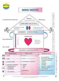 ESTIMULACIÓN TEMPRANA Y DESARROLLO INFANTIL ... | estimulación-temprana-sentidos | Scoop.it