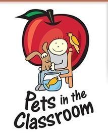 Pet Grants, small pets, aquarium equipment #elemchat #spedchat | Technology in Education | Scoop.it