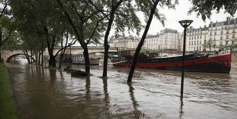 Crue de la Seine: «Un scénario de crise est hautement probable» | Planete DDurable | Scoop.it