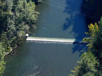 The Fish Files: Elwha River Weir Summary 2011 | Fish Habitat | Scoop.it