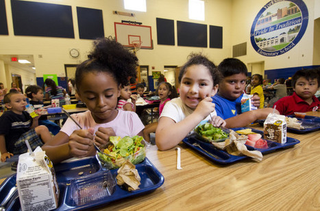 Editor's Note: School Food Matters | Vertical Farm - Food Factory | Scoop.it
