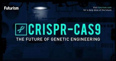 How CRISPR Works: The Future of Genetic Engineering and Designer Humans | The Long Poiesis | Scoop.it
