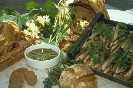 Gastronomia, ecco la festa dell'asparago ad Arta Terme   zigzagando   Scoop.it