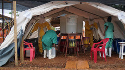 The Berkeley Blog: Ebola infection numbers still doubling every month | Amazing Science | Scoop.it