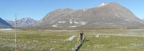La tundra, un inmenso depósito de CO2 que podría escapar a la atmósfera.   Medio Ambiente   Scoop.it