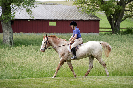 Horse, rider have 100 years of experience - Frederick News Post (subscription) | Horses | Scoop.it