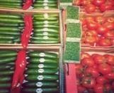 L'agriculture biologique face au défi de la sécurité alimentaire | Génie alimentaire | Scoop.it