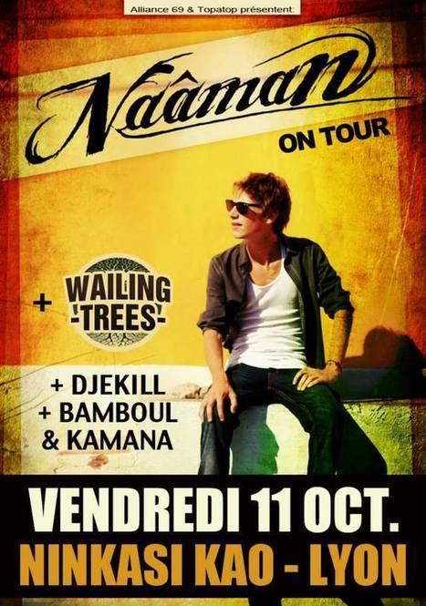 (11/10) Naâman (live) + Wailing Trees + Bamboul ... - REGGAE.fr | Wailing Trees | Scoop.it