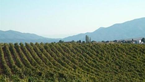 En Bulgarie, les étrangers pourront continuer à acheter des terres | Agriculture en Pays de la Loire | Scoop.it