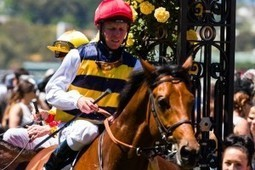 Stevens Delighted To Take Part In International Jockeys' Championship | Horse Racing News | Scoop.it