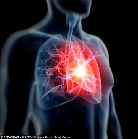Profession is 'key indicator of heart disease for the middle aged' | Heart Disease - Advances, Knowledge, Integrative & Holistic Treatments | Scoop.it