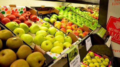 Emballage, pub, taxe, produits frais : des propositions choc pour mieux manger - Sciences - MYTF1News   Forme, Poids et Nutrition   Scoop.it