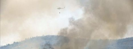 Consecuencias de los incendios: ecosistemas y hábitats protegidos destruidos | Incendios forestales | Scoop.it
