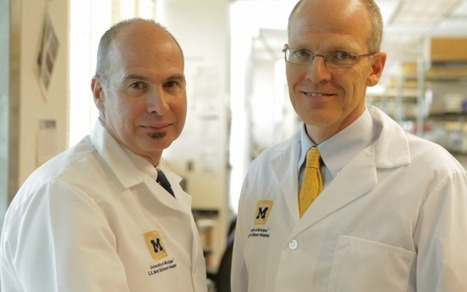 Baby's life saved with groundbreaking 3D printed device from University of Michigan that restored his breathing | UofMHealth.org | Friday Thinking 24 May 2013 | Scoop.it