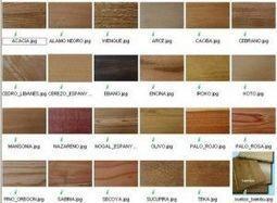 Tipos y clasificacion de la madera | Carpintería y Tic's | Scoop.it