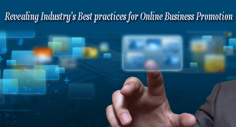 Revealing Industry's Best practices for Online Business Promotion | Software Houses | Scoop.it