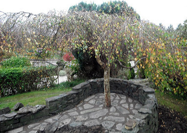 Coombe And Sharpe Landscaping Cumbria - Drives And Pathway Installation Cumbria | Garden Design | Scoop.it