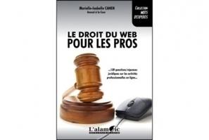 """Bonnes feuilles : """"Le droit du Web pour les pros""""   Web   Scoop.it"""