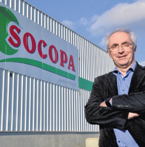 Socopa vigne   Actus en LR   Scoop.it