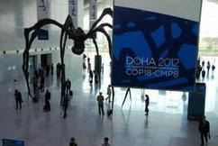 """Dispatches from Doha: """"The Lack of Urgency Is Disquieting""""   WRI Insights   The Glory of the Garden   Scoop.it"""