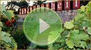 Domaine Couly-Dutheil : vins de Chinon, vins rouges, blancs et rosés. | DOMAINES ET CHATEAUX AOC CHINON | Scoop.it