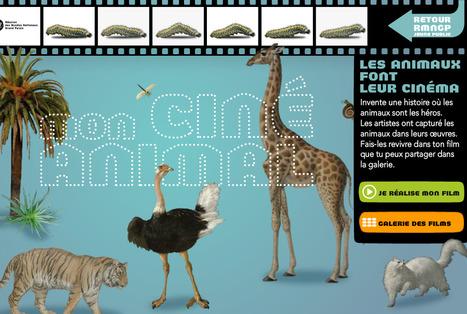 Avec MON CINÉ ANIMAL, les animaux font leur cinéma, tu es cinéaste. | Technologies pour les langues étrangères | Scoop.it