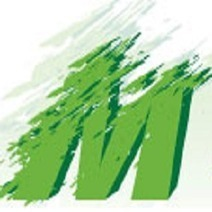 Mould Removal Melbourne - Ensuring Hygiene Everywhere   Mould Pro   Scoop.it