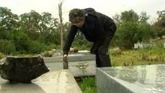 La Corse, pays de cocagne pour les abeilles - France 3 | Apiculture et protection de l'environnement | Scoop.it