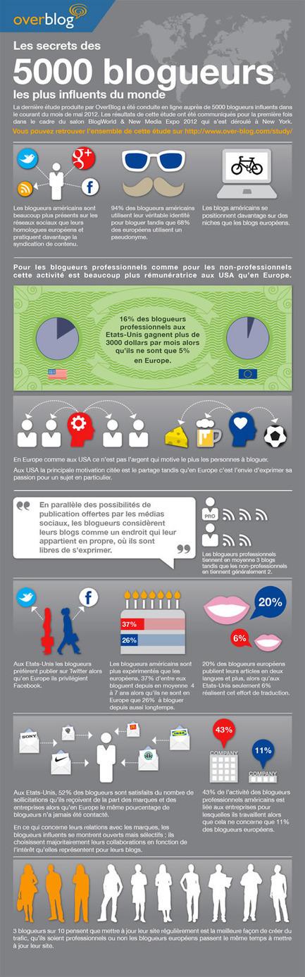 [infographie] Etude : seulement 5% des blogueurs professionnels européens gagnent plus de 2300 euros par mois | Social Media Curation par Mon Habitat Web | Scoop.it
