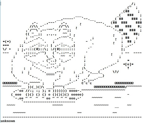 RACOON - ASCII ART | ASCII Art | Scoop.it