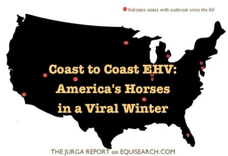 EHV Coast to Coast: Filly Euthanized at California's Santa Anita Racetrack Latest Chapter in American Horses' Viral Winter | The Jurga Report: Horse Health, Welfare, and Care | Scoop.it