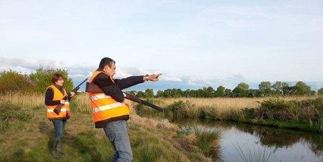 Blayais : dans les marais, ils chassent les ragondins au fusil   Revue de presse Pays Médoc   Scoop.it