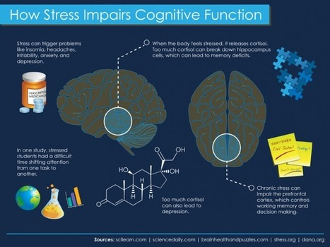 20 Calming Apps For Stressed-Out Students (And Teachers)   Classroom Teaching Resources   Scoop.it
