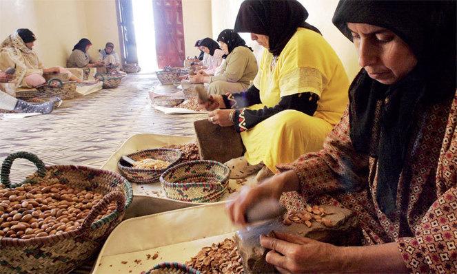 Maroc: Les coopératives féminines se familiarisent avec le changement climatique