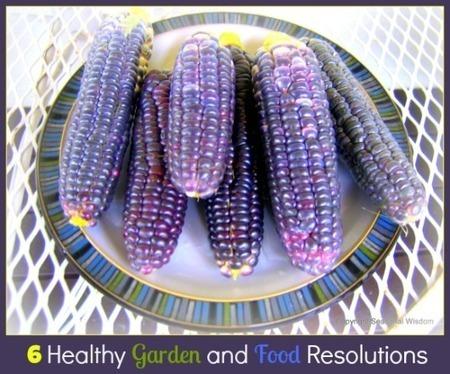 Six Healthy Garden and Food Resolutions by Seasonal Wisdom | Bonbon Break | Annie Haven | Haven Brand | Scoop.it