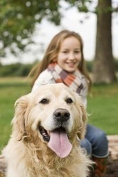 Reliable dog boarding by Doggie Daycare Delight in Crystal Lake IL | Doggie Daycare Delight | Scoop.it