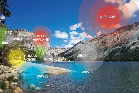 Soundscape / Noise - Yosemite National Park | ZeroCarbonMusic | Scoop.it