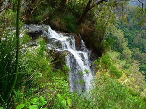 Top destinations nature du Queensland ☺ Couleurs d'Aurore | My topics | Scoop.it