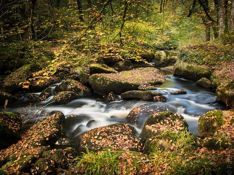 photo en Finistère, Bretagne et...: l'automne est arrivé sur la Rivière d'Argent à Huelgoat (7 photos) | photo en Bretagne - Finistère | Scoop.it
