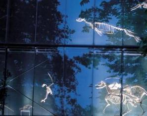 Cette nuit les musées font la fête - LaDépêche.fr | Musée des Augustins | Scoop.it