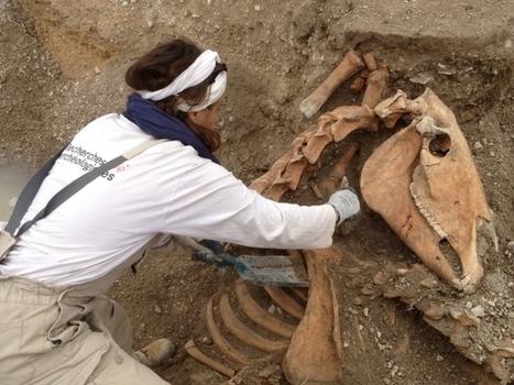 L'archéologie contribue-t-elle à fonder nos mythes nationaux ? - Histoire - France Culture | L'actu culturelle | Scoop.it