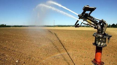Dordogne : les cours d'eau de plus en plus secs | Agriculture en Dordogne | Scoop.it
